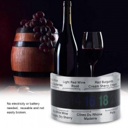 Wine bottle thermometer - stainless steel - clip