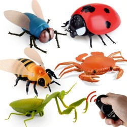 Infrared RC insect - simulated spider / bee / fly / crab / ladybug - electric robot - toy