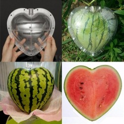 Square - Heart Shape - Watermelon Shaping - Mold