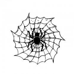 Spinne auf einem Spinnennetz - Autoaufkleber