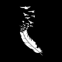 Feather with birds - car sticker