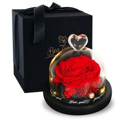 Erhaltene ewige Rose - Glasbox mit Licht - Valentinstag / Hochzeitsgeschenk