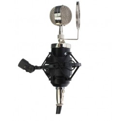 Professional studio condenser microphone with shock-mount