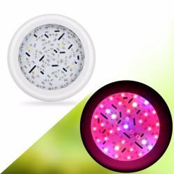 360W UFO 36 LED Pflanzenlicht - Vollspektrum - Doppelchips - Hydroponik