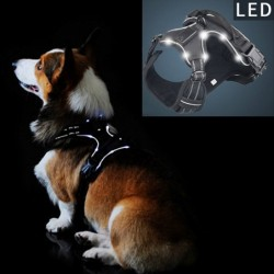 Dog's harness - with LED - adjustable - reflective - waterproof