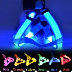 Dog harness - LED - flashing / glowing lights - night safety