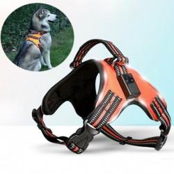 Hundegeschirr - LED - blinkende / reflektierende Lichter - Sicherheitsnachtspaziergang - wasserdicht