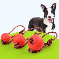 Rubber training ball for dogs - teeth cleaning - with a rope