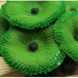 Coral Decorativo para Acuario en Silicona