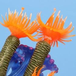 Corallo per acquario in resina morbido