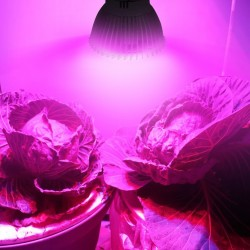 Full Spectrum 8W E27 Led Grow Light