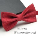 Colourful men's bow tie