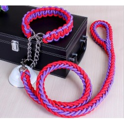 Leather Colorful Dod Pet Leash & Collar