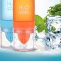 650ml H20 Water Bottle Lemon Juice Fruit Infuser