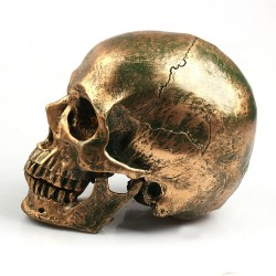 Bronze Human Skull Resin Craft