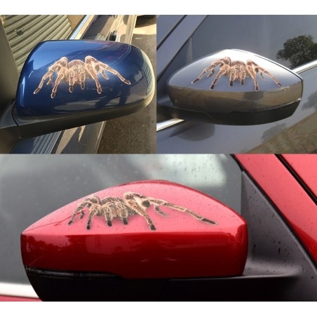 3D Spider & Scorpion & Lizard Car Sticker Decal