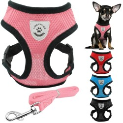 Breathable Nylon Mesh Puppy Dog Harness and Leash Set