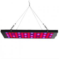 Egrow GL-2 40W LED lampa światło wzrostu z czerwonym niebieskim UV & IR spectrum