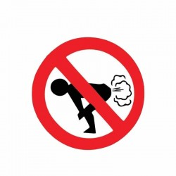 No Farting - sticker de carro - 12 * 12cm
