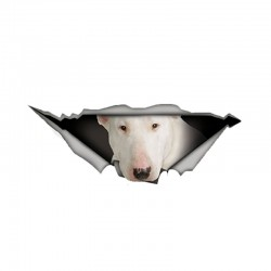White Bull Terrier - vinyl car sticker - waterproof - 13 * 4.9cm
