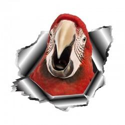 Papuga 3D - winylowa naklejka na samochód 13 * 12,5 cm