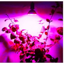 E27 3W LED Plant Grow Light Hydroponic