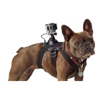 GoPro Dog Mount Harnass