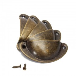 Tiradores para muebles en forma de concha con tornillos - 8 piezas